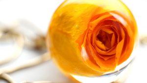 ta-róża-w-żywicy-8