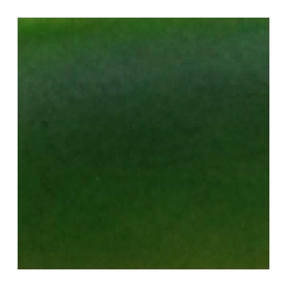 TRANSPARENT - ZIELONY 50ml - Farba transparentna