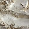 BP59 Barwnik perłowy Kość słoniowa